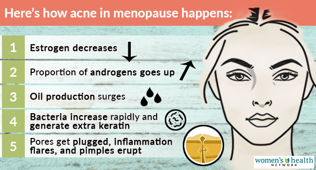 The Hormonal Causes of Adult Acne - Women's Health Network