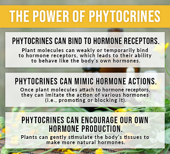 power of phytocrines